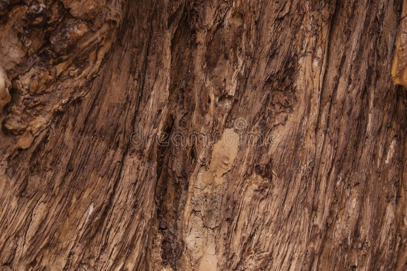 Background texture pattern of old barn wood boards - rustic cowboy antique vintage style royalty free stock images