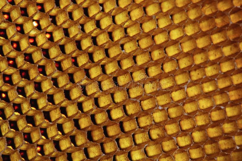 Background texture and pattern of a section of wax honeycomb from a bee hive filled with golden honey in macro view.  royalty free stock images