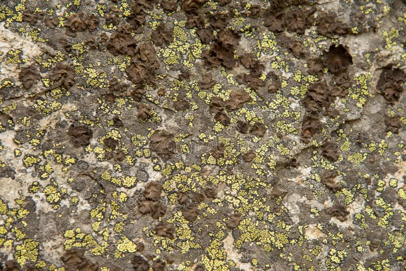Background texture rock formations royalty free stock photography