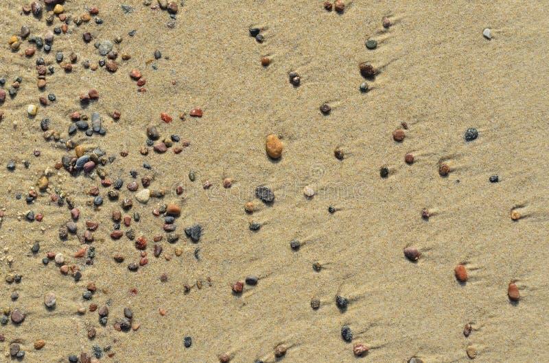 Background texture of sea sand stones stock image