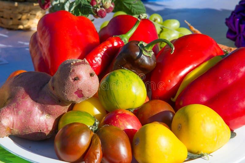 Background texture. Still life of vegetables, tomato pepper potato royalty free illustration