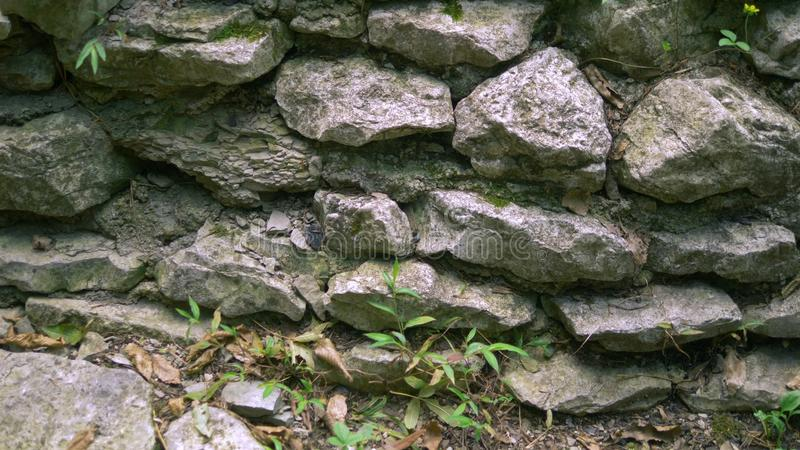 Background texture of a stone wall with grass and moss royalty free stock photos