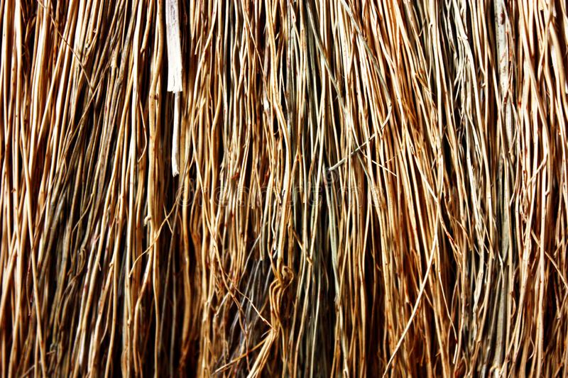 Background / texture of the straw royalty free stock photos