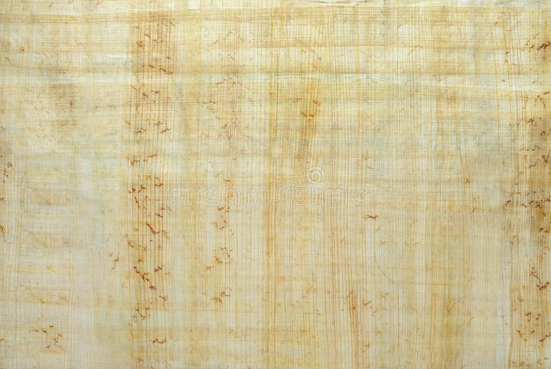 Background, texture: surface of natural Egyptian papyrus royalty free stock photo