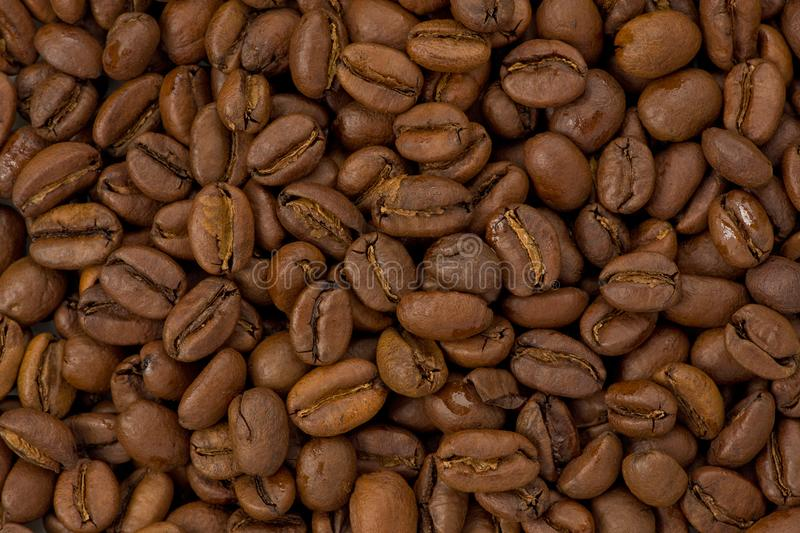 Light Roasted Coffee Beans stock photos