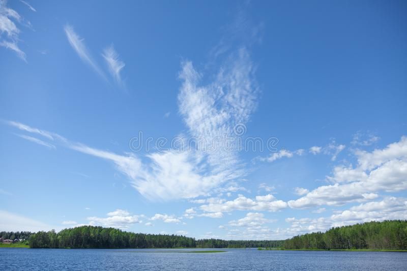 Background with thin white clouds in shape of bird. In the blue summer sky over the lake. Forest on the far bank stock images