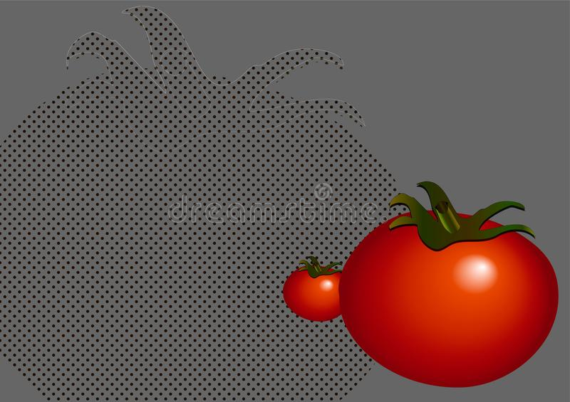Background_tomato_gray 库存图片