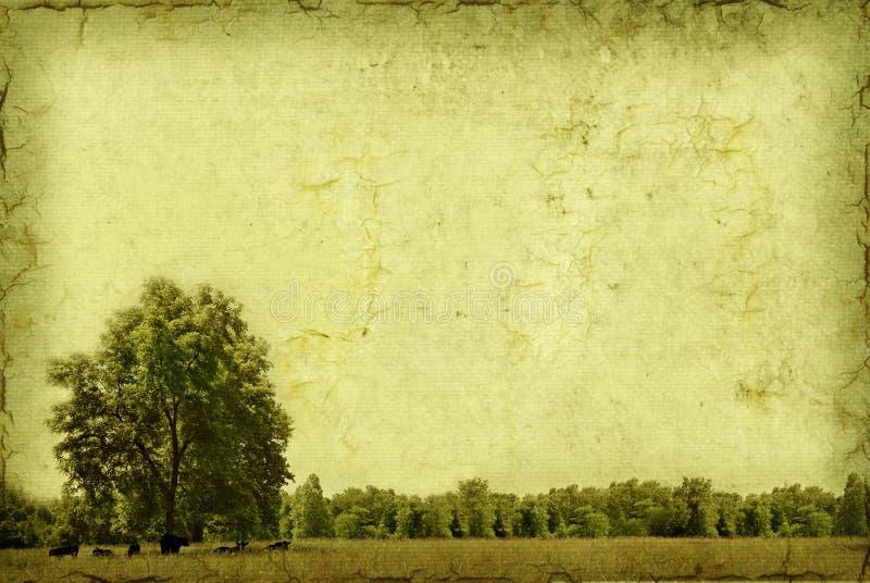 background tree 库存例证