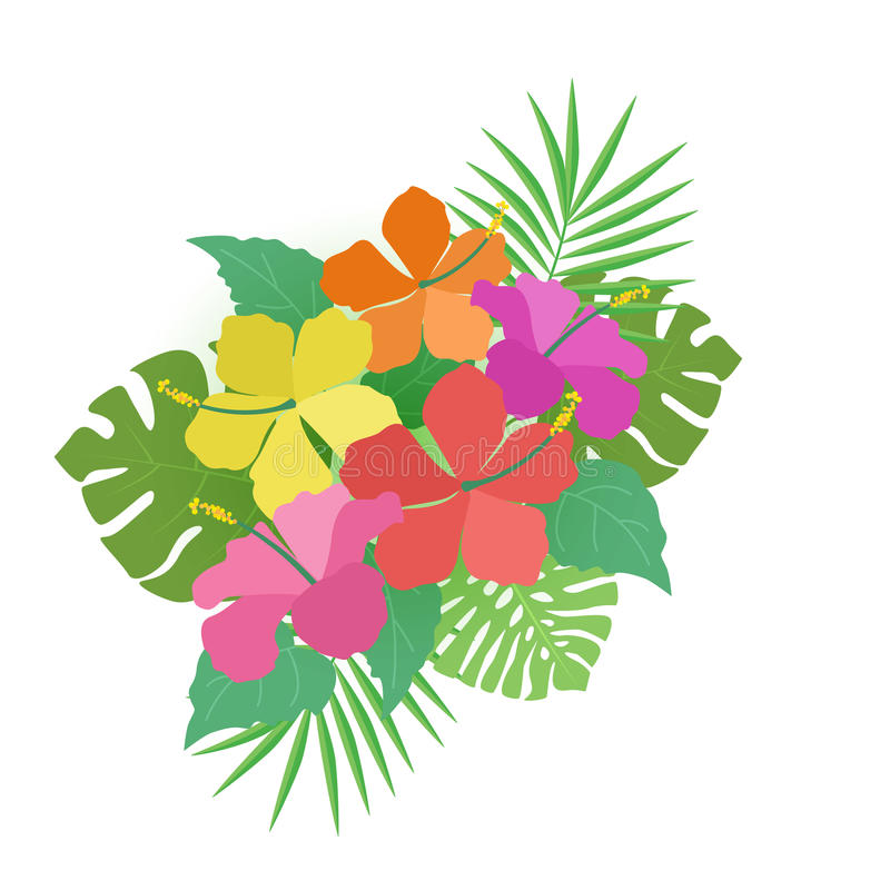 Background with tropical flowers. Vector illustration hibiscus flower. Background with tropical flowers stock illustration