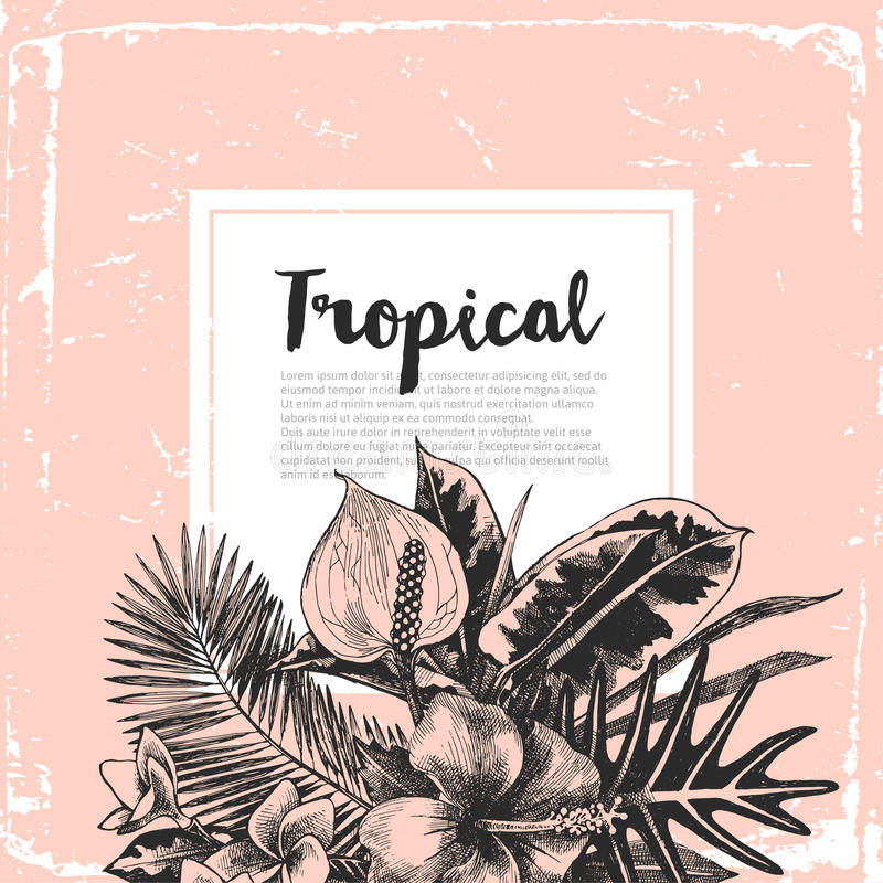 Background with tropical plants stock illustration