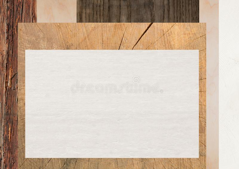 Background with various wooden texture and copy space stock photo