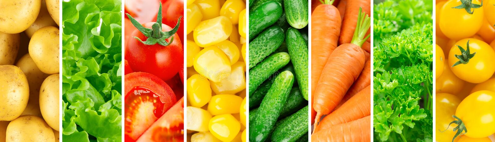 Background of vegetables. Fresh food royalty free stock photos