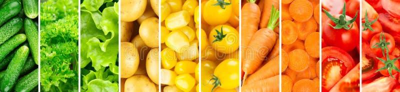 Background of vegetables. Fresh food. Tomato, cucumber, corn, carrot, lettuce, potato, parsley stock images
