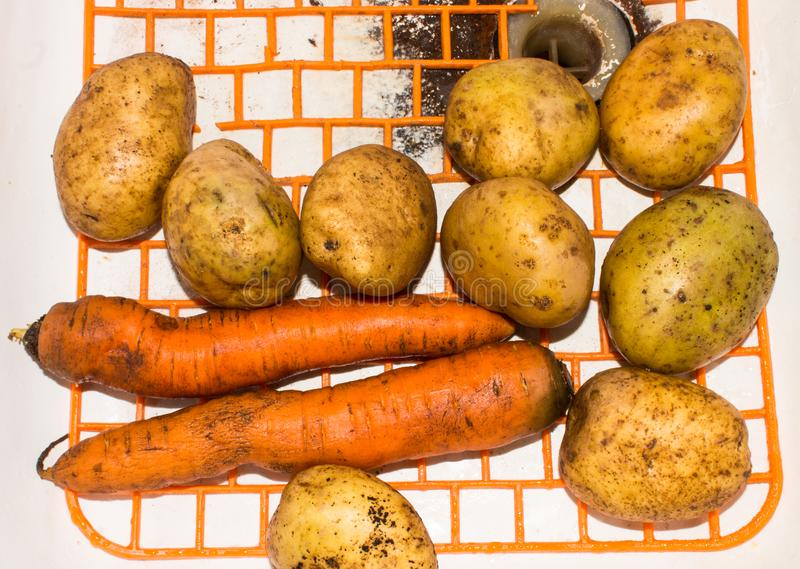 Background of vegetables.Potatoes and carrots. stock photography
