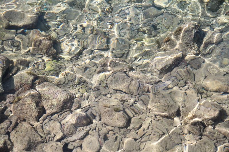 Background water, surface of sea on rocks, close up. Reflection of sun beams in water and shallow soil, shoal of ocean. royalty free stock images