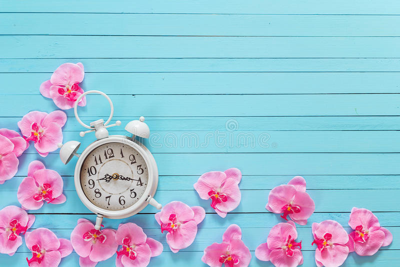 Background with white alarm clock and flowers pink orchid on blu. E painted wooden planks. Place for text. Top view with copy space royalty free stock photo