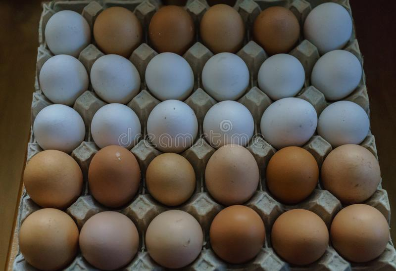 Background from white and brown domestic chicken eggs. Organic food.  stock image