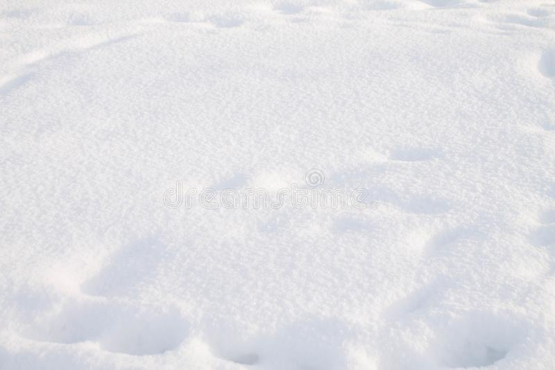 Background white texture snow close up, winter stock photo