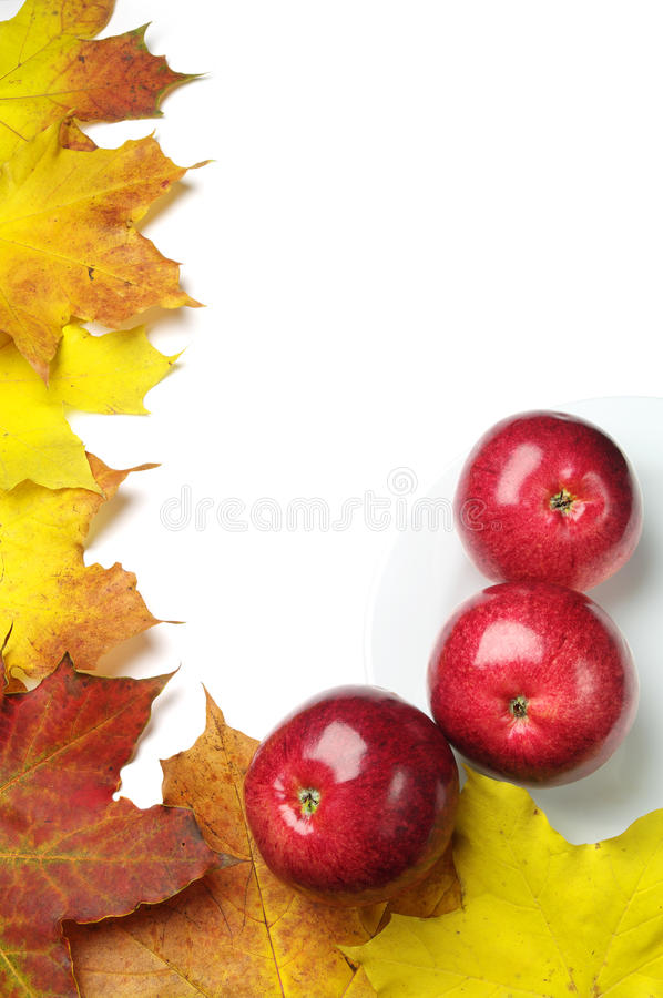 Free Background With Red Apples Stock Photo - 27255780