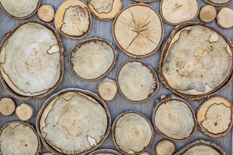 Background of wood texture, round shape, which are carved from a large and small tree. Cracks, annual rings, bark. Design.  royalty free stock photography