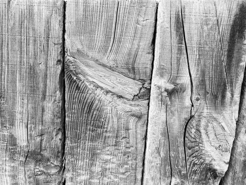 Background from a wooden board wooden boards with knots. in black and white. Old wooden painted light brown rustic background stock photos