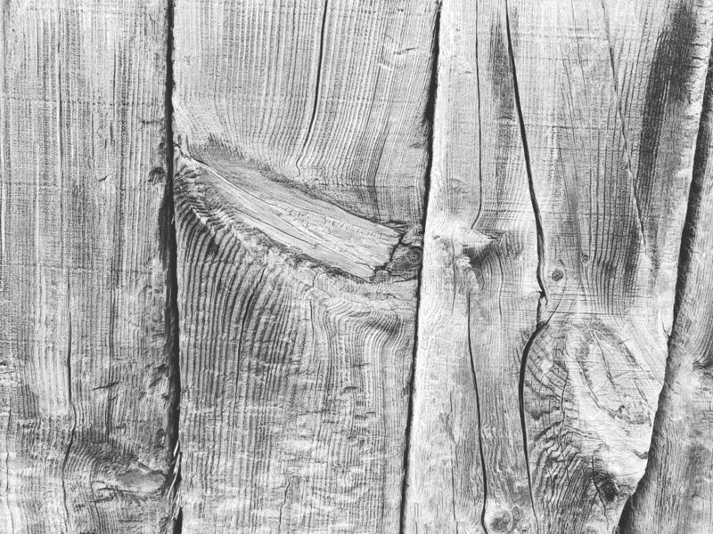 Background from a wooden board wooden boards with knots. in black and white. Old wooden painted light brown rustic background stock photo