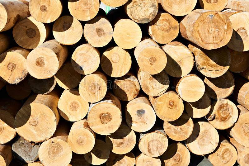 Background from wooden logs royalty free stock photography