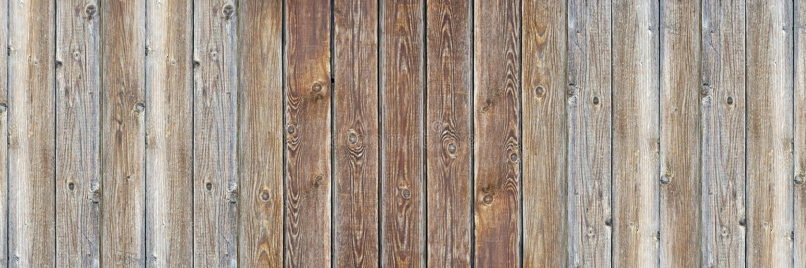 Background, wooden texture, old boards. royalty free stock image