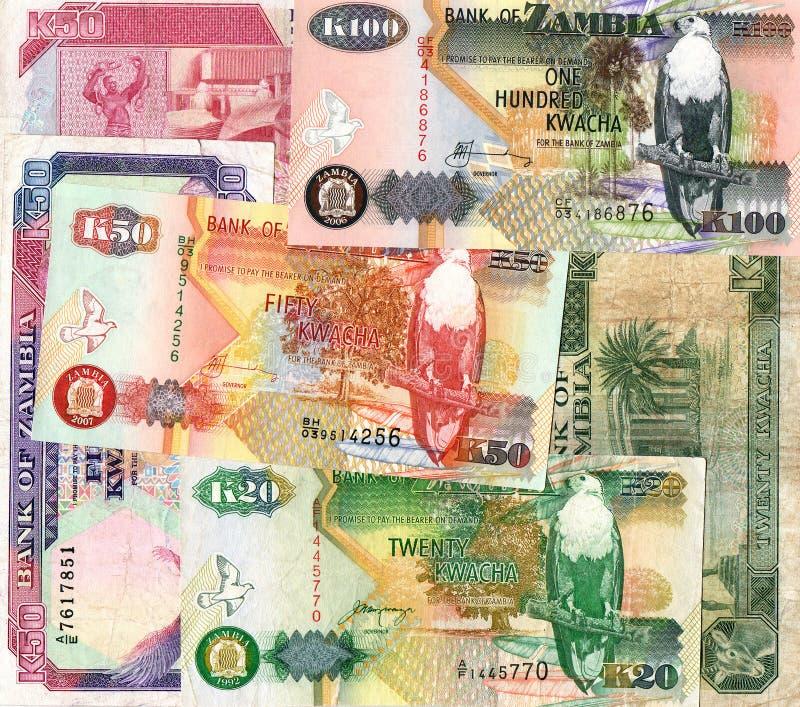 Background of Zambia kwacha banknotes stock photography