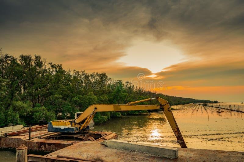 Backhoe graaft langs de overzeese kust dichtbij de mangrove voor stock afbeelding