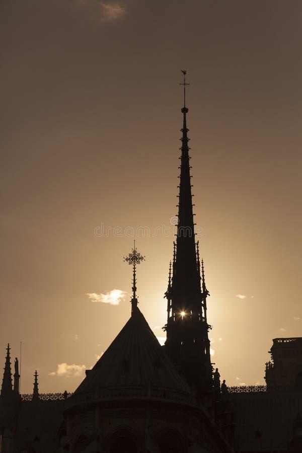 Backlight i domkyrkan av Notre Dame, Paris, Ile-de-Frankrike, arkivfoton