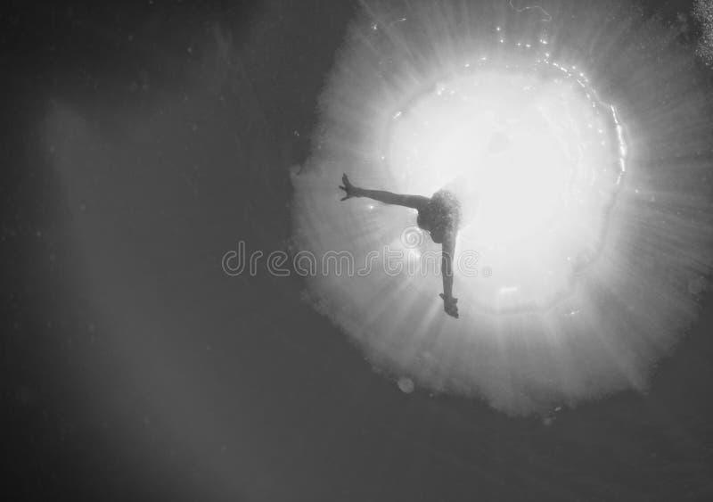 Backlight nurek podwodny w czarny i biały zdjęcia stock