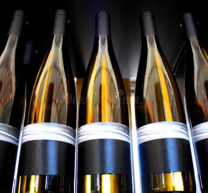 backlit вино бутылок стоковое фото rf