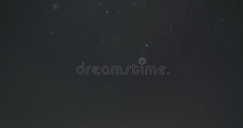 Backlit dust particles explosion effect on a black background with motion blur. Wide photo stock photography