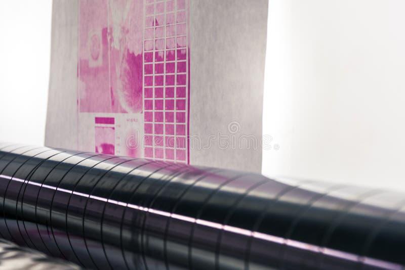 Backlit Flexography preparera kalibrering för prov för rengöringsdukrullförtitt royaltyfri foto