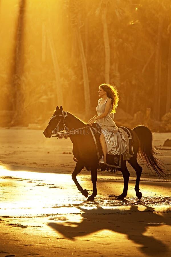 Backlit vrouw het berijden paard op strand stock afbeeldingen
