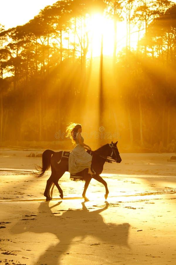 Backlit vrouw het berijden paard op strand royalty-vrije stock afbeelding