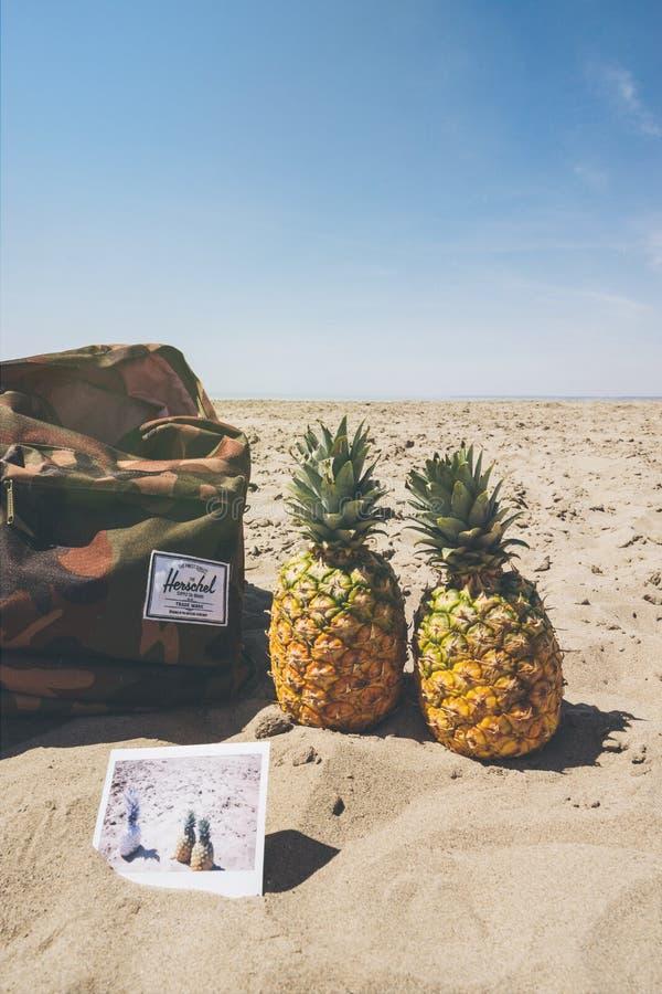 Backpack, Beach, Beachlife stock photos