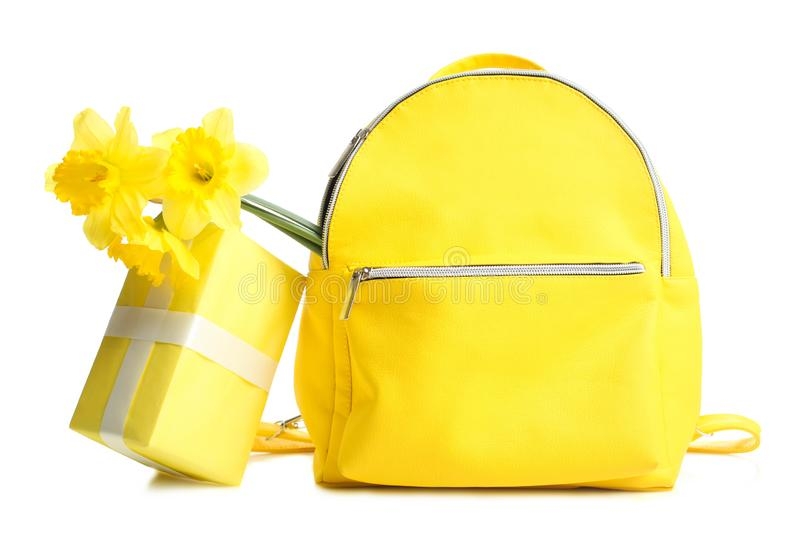 Backpack with bouquet of narcissus and gift stock images