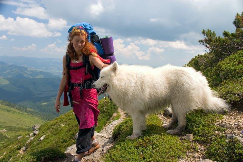 backpacker κορίτσι σκυλιών στοκ εικόνες με δικαίωμα ελεύθερης χρήσης