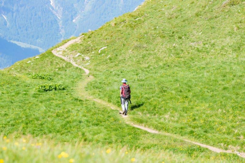 Backpacker идя на тропу в горе Лето рискует летние каникулы на Альпах Люди Wanderlust путешествуя жулик стоковые изображения