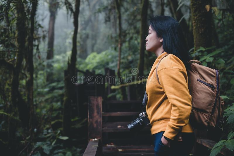 Backpacker asiático que mira la visión en rastro nutural de la selva tropical mofa de la bandera encima del espacio de la copia d fotos de archivo libres de regalías