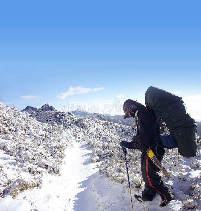 Backpacker com caminhada pesada do bloco na neve imagem de stock royalty free