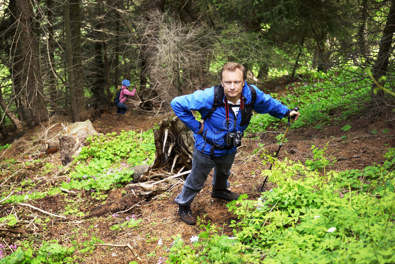 Backpacker man in mountain forest stock photography