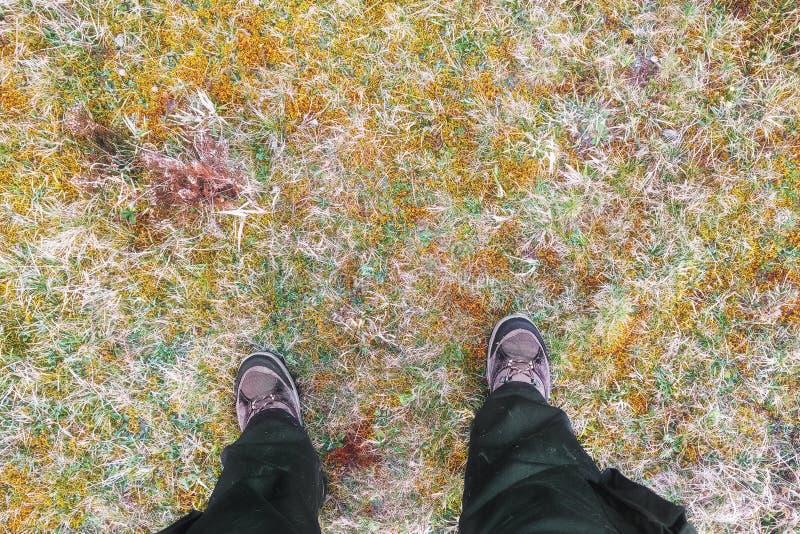 Backpacker turystyczna pozycja w wycieczkowiczu inicjuje na jesieni trawie zdjęcia stock