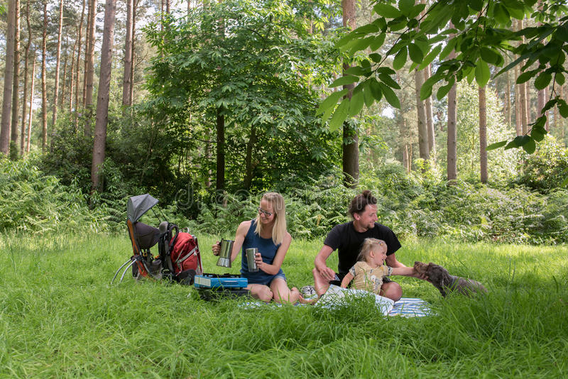 Backpackers family dining in nature. Happy family having dinner in woodland.Camping family concept royalty free stock image