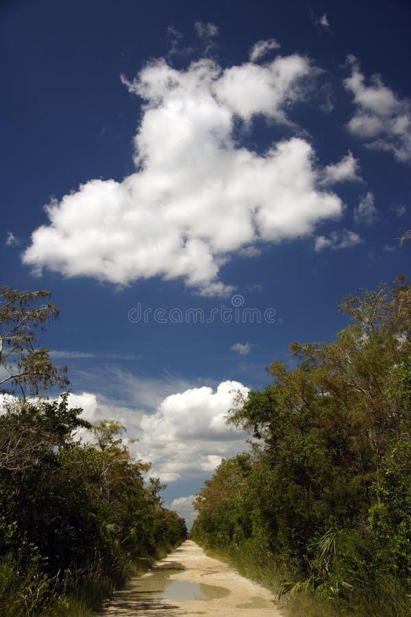 backroad everglades στοκ φωτογραφία με δικαίωμα ελεύθερης χρήσης