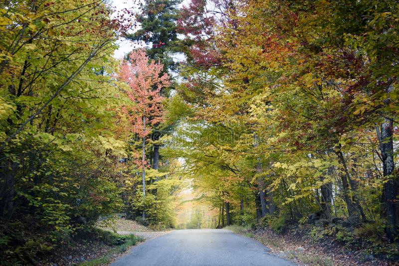Backroad in new england at fall. Road of new england during fall foliage season when trees take red and golden color stock photos