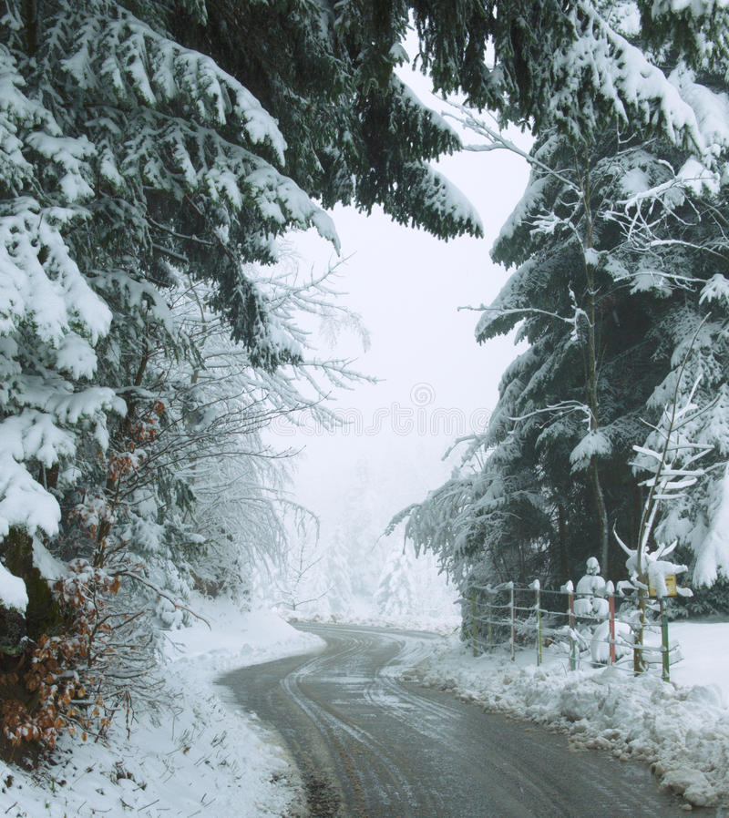 BackRoadPhander. This is a back road going from Bregenz Austria up to the top of the Pfänder mtn. It was taken during the Winter from the side of the road. It royalty free stock image