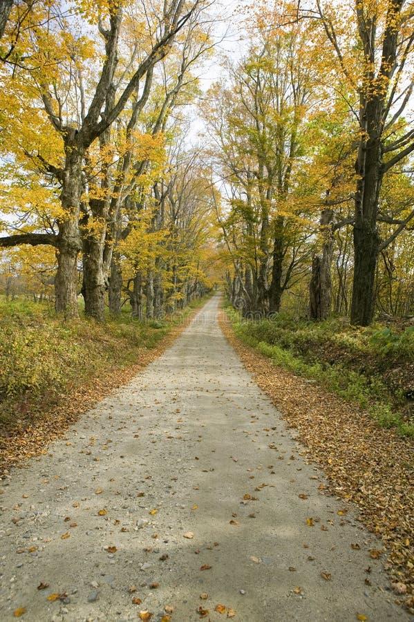 Backroads im Herbst auf Mohikaner-Spur in West-Massachusetts, Neu-England stockfoto